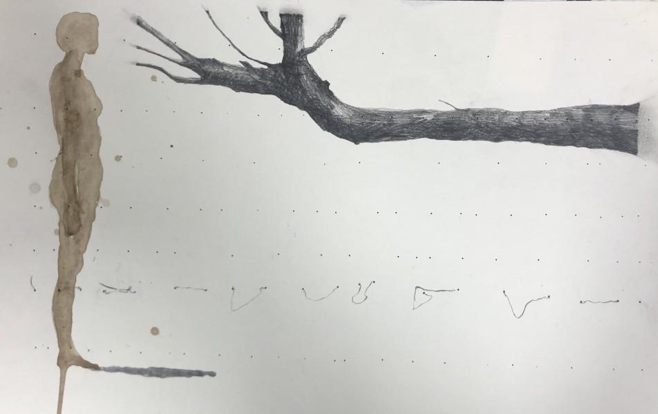 Walnoten inkt. Grafiet. Potlood. op papier. 30 cm x 40 cm.